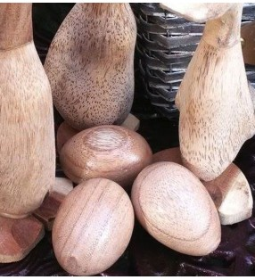 Wooden Duck eggs